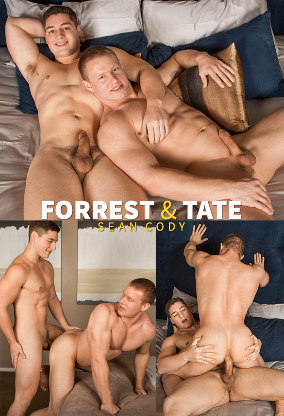 Sean Cody: Forrest fucks Tate raw