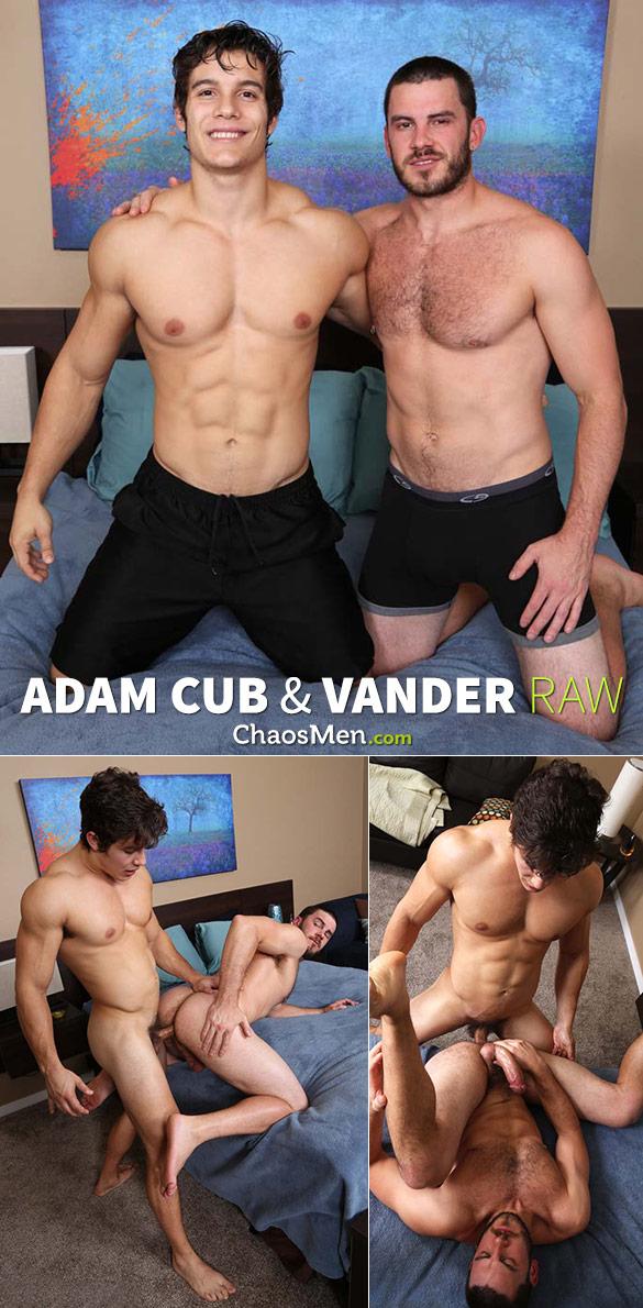 ChaosMen: Adam Cub fucks Vander raw