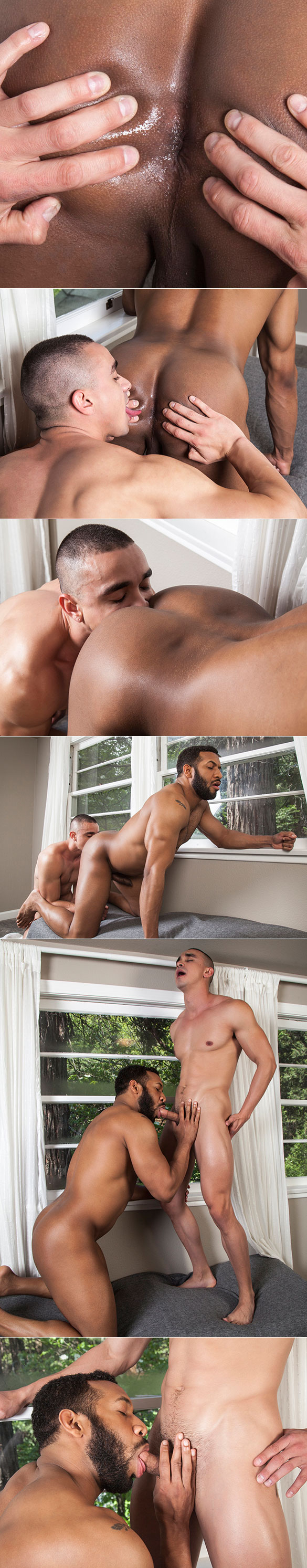 Randy Blue: Jay Landford makes his bareback debut with Randy Dixon