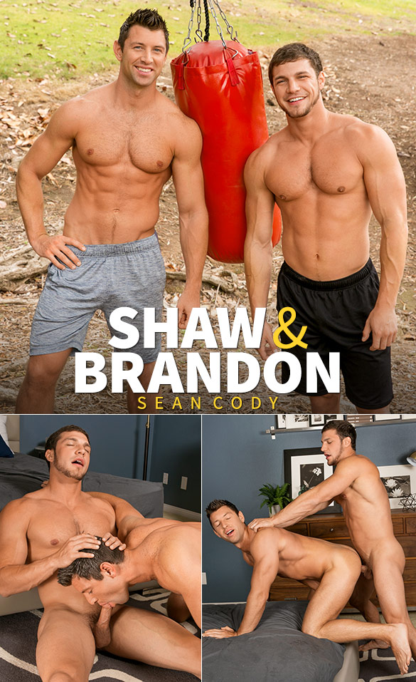 Sean Cody: Brandon bangs Shaw bareback
