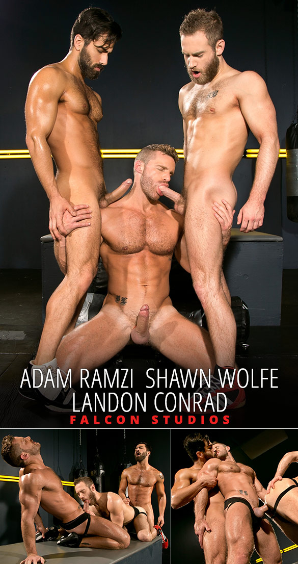 Falcon Studios: Landon Conrad, Shawn Wolfe and Adam Ramzi's hot threeway fuck