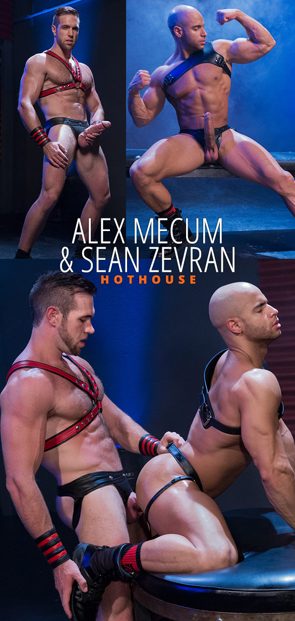 "HotHouse: Alex Mecum and Sean Zevran pound each other in ""Skuff: Rough Trade 2"""