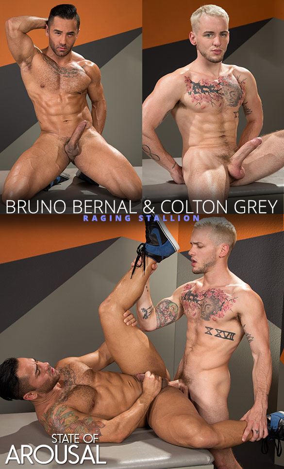 "Raging Stallion: Colton Grey slams Bruno Bernal in ""State of Arousal"""