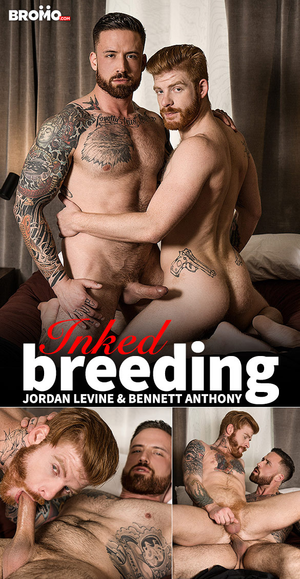 "Bromo: Jordan Levine pounds Bennett Anthony raw in ""Inked Breeding"""