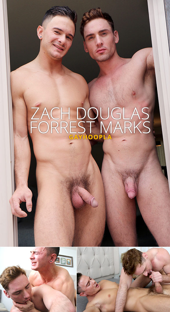 GayHoopla: Zach Douglas fucks Forrest Marks