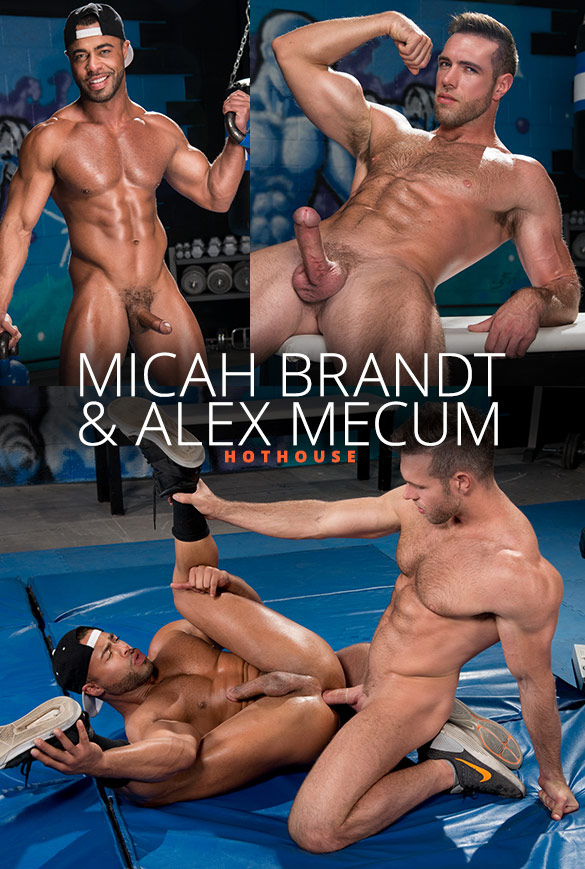 """HotHouse: Alex Mecum pounds Micah Brandt in """"The Trainer: No Excuses"""""""