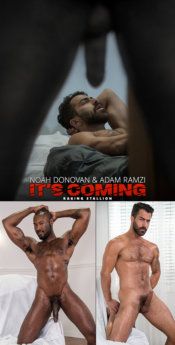 "Raging Stallion: Noah Donovan bangs Adam Ramzi in ""It's Coming"""