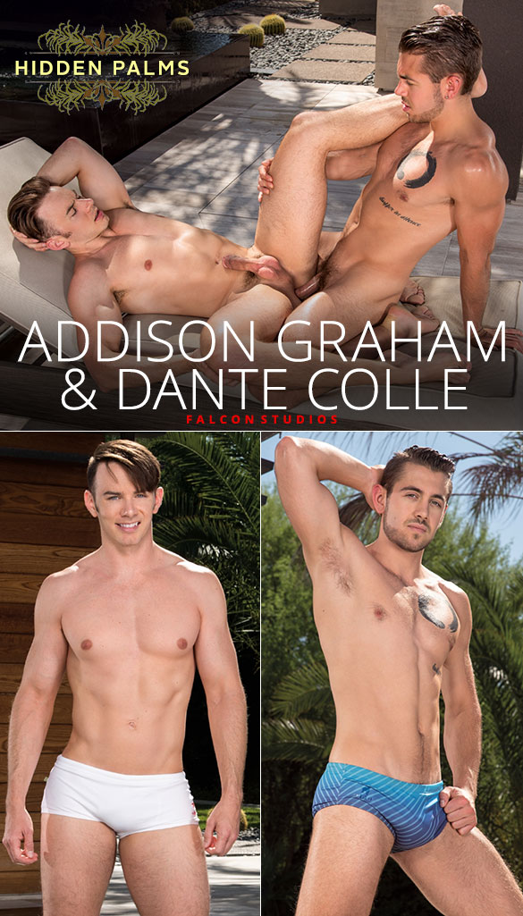 "Falcon Studios: Dante Colle fucks Addison Graham in ""Hidden Palms"""