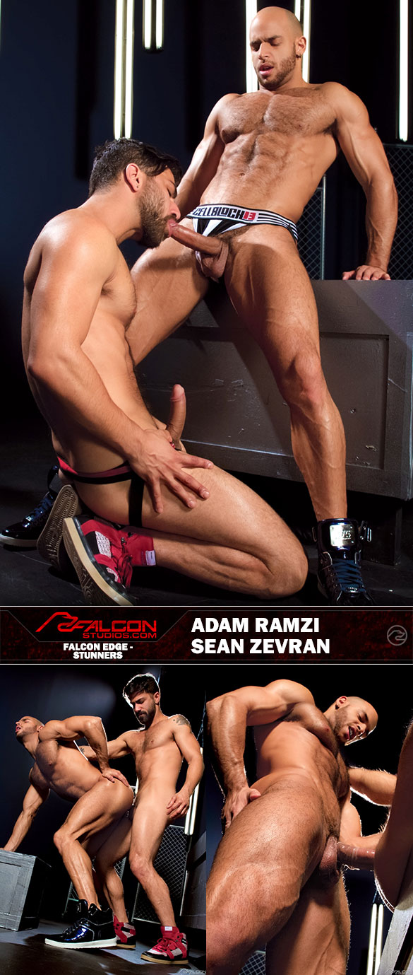 "Falcon Studios: Sean Zevran and Adam Ramzi flip fuck in ""Stunners"""