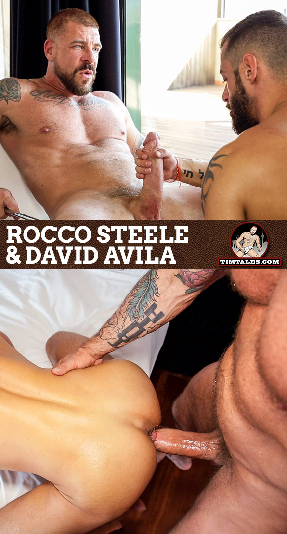 TimTales: Rocco Steele barebacks David Avila