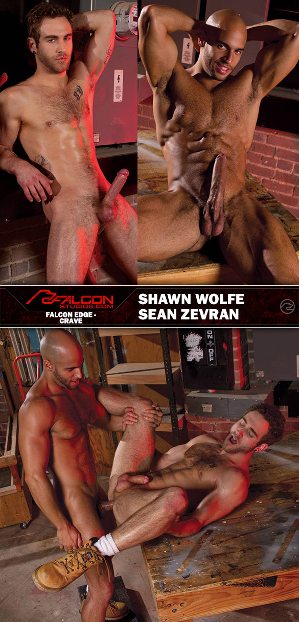 "Falcon Studios: Sean Zevran fucks Shawn Wolfe in ""Crave"""