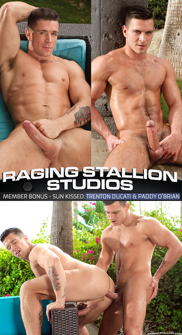 Raging Stallion: Paddy O'Brian bangs Trenton Ducati