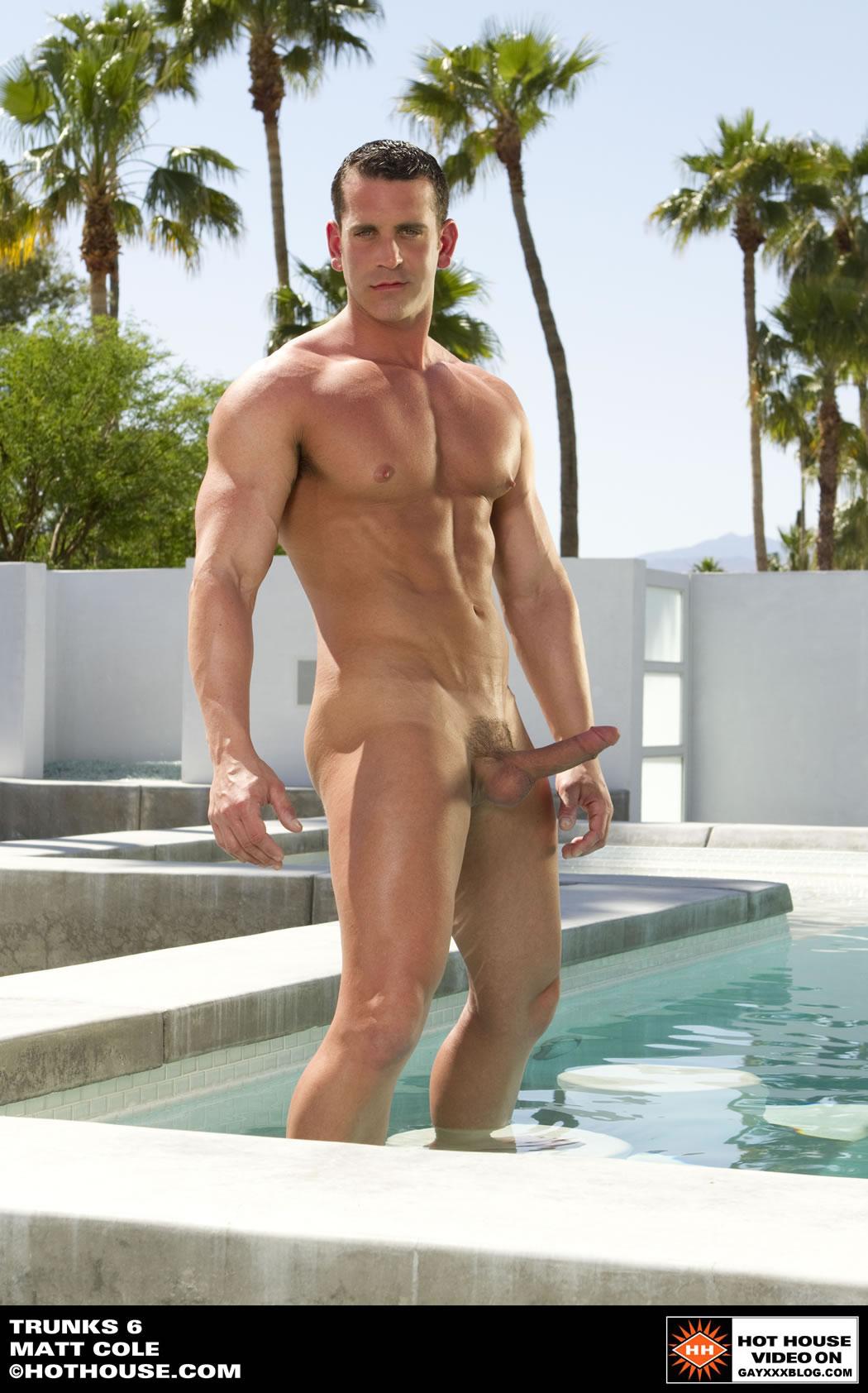 Matt Cole Gay