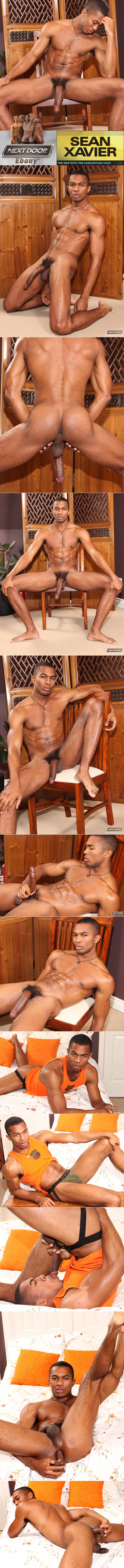 NextDoorEbony: Big-dicked stud Sean Xavier sucks and fucks himself